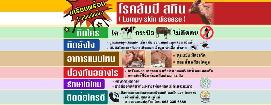 Lumpy skin disease